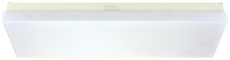 Fluorescent Ceiling Light, JPY20-2E