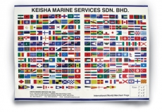 International Flags & Codes